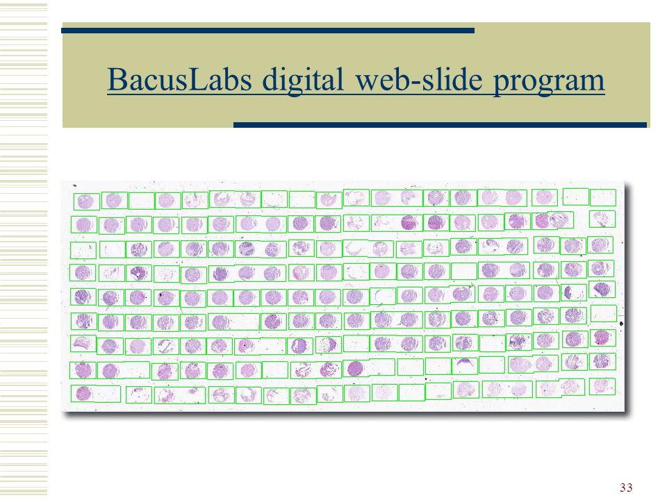 33 BacusLabs digital web-slide program