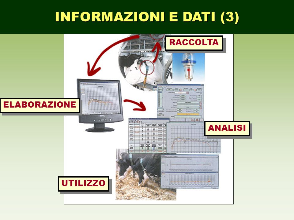 INFORMAZIONI E DATI (3) ELABORAZIONE ANALISI UTILIZZO RACCOLTA