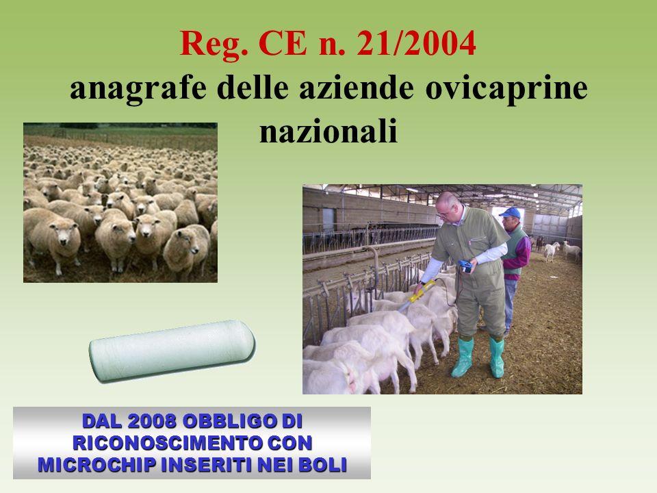 Reg. CE n. 21/2004 anagrafe delle aziende ovicaprine nazionali DAL 2008 OBBLIGO DI RICONOSCIMENTO CON MICROCHIP INSERITI NEI BOLI