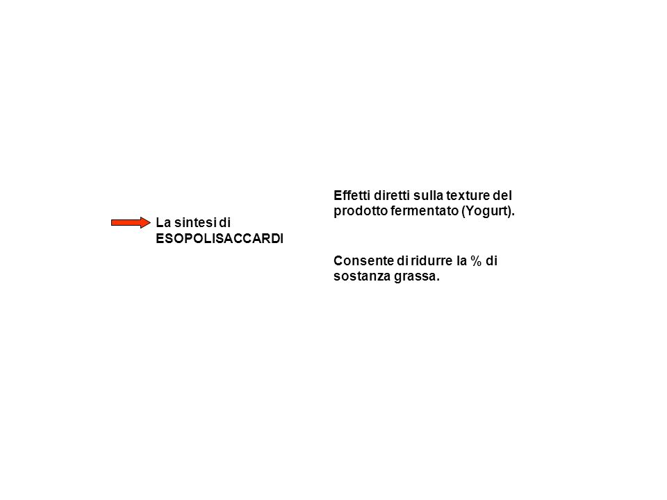La sintesi di ESOPOLISACCARDI Effetti diretti sulla texture del prodotto fermentato (Yogurt). Consente di ridurre la % di sostanza grassa.