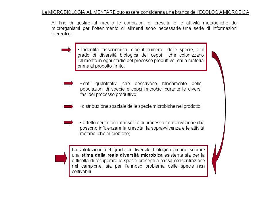 La MICROBIOLOGIA ALIMENTARE può essere considerata una branca dellECOLOGIA MICROBICA Al fine di gestire al meglio le condizioni di crescita e le attiv