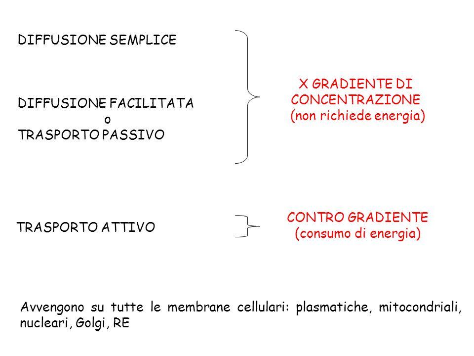 DIFFUSIONE SEMPLICE DIFFUSIONE FACILITATA o TRASPORTO PASSIVO TRASPORTO ATTIVO CONTRO GRADIENTE (consumo di energia) X GRADIENTE DI CONCENTRAZIONE (no