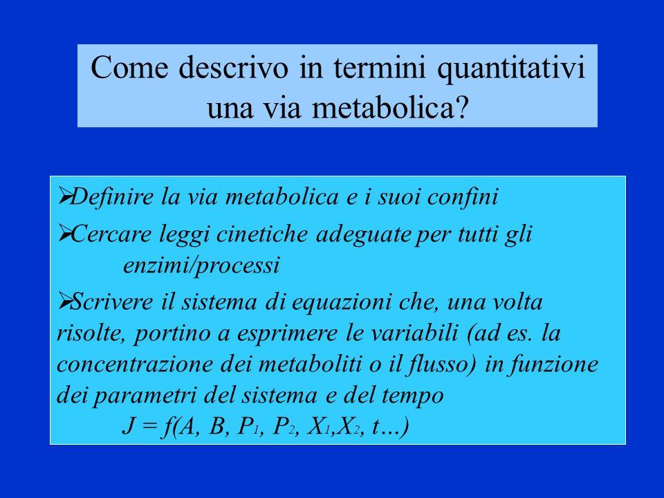 Una via metabolica: qualche concetto in più X 0 S 1 S 2 S 3 …..