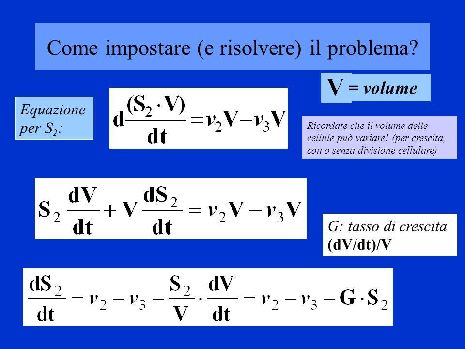 Se fate lo stesso per tutti i metaboliti (scrivere unequazione) arrivate ad un insieme di equazioni non lineari Per S 2 vale la relazione: (dS 2 /dt) = v 2 - v 3 - GS 2 (dS 2 /dt) = v 2 - v 3 - GS 2 (dS 3 /dt) = v 3 – v 4 - GS 3 (dS 4 /dt) = v 4 - v 5 - GS 4 …..e così via Allo steady state = 0 (flusso costante) e con G=0 (la cellula/ tessuto non cresce di volume), il sistema si semplifica 0 = v 2 - v 3 0 = v 3 – v 4 0 = v 4 – v 5 …..
