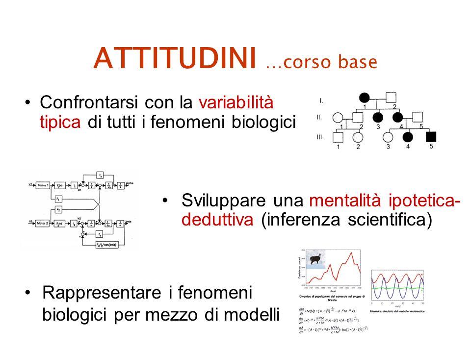 ATTITUDINI …corso base Rappresentare i fenomeni biologici per mezzo di modelli Confrontarsi con la variabilità tipica di tutti i fenomeni biologici Sviluppare una mentalità ipotetica- deduttiva (inferenza scientifica)