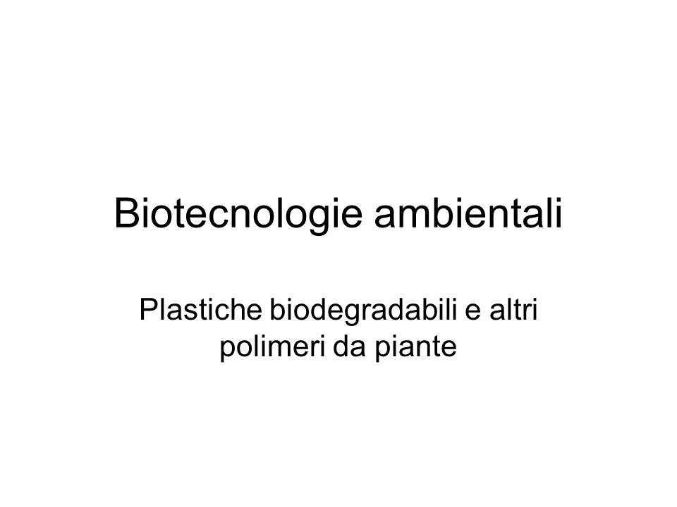 Biotecnologie ambientali Plastiche biodegradabili e altri polimeri da piante