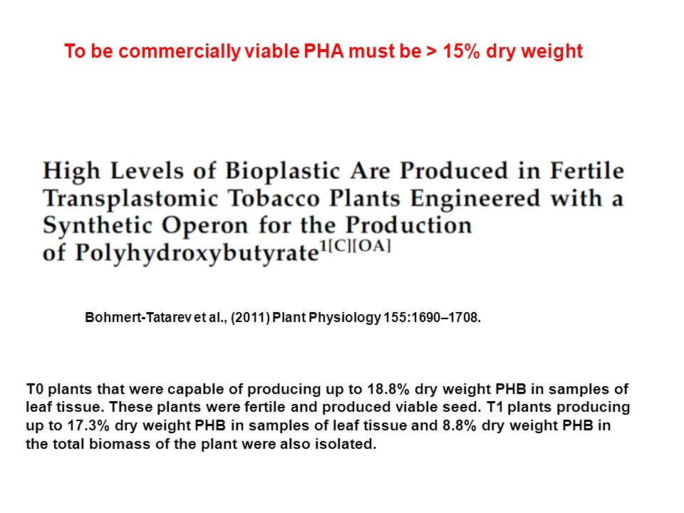 Bohmert-Tatarev et al., (2011) Plant Physiology 155:1690–1708. T0 plants that were capable of producing up to 18.8% dry weight PHB in samples of leaf