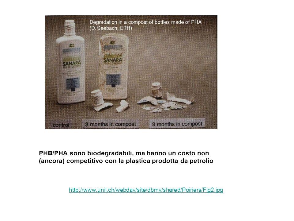 PHB/PHA sono biodegradabili, ma hanno un costo non (ancora) competitivo con la plastica prodotta da petrolio http://www.unil.ch/webdav/site/dbmv/share