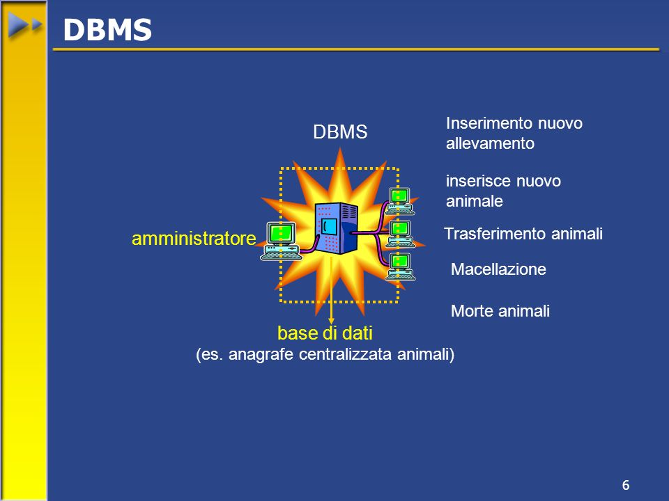 6 inserisce nuovo animale Trasferimento animali Macellazione amministratore base di dati (es. anagrafe centralizzata animali) DBMS Inserimento nuovo a