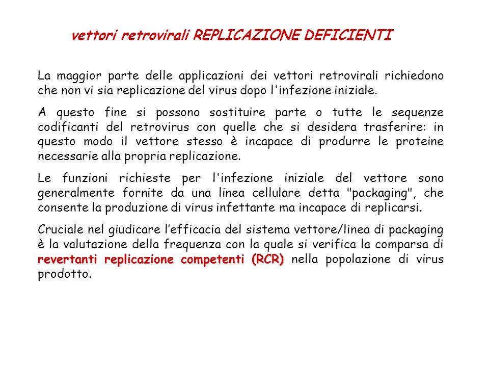 vettori retrovirali REPLICAZIONE DEFICIENTI La maggior parte delle applicazioni dei vettori retrovirali richiedono che non vi sia replicazione del vir