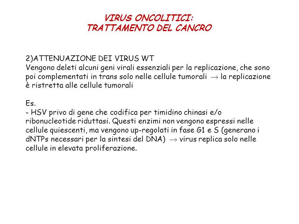 2)ATTENUAZIONE DEI VIRUS WT Vengono deleti alcuni geni virali essenziali per la replicazione, che sono poi complementati in trans solo nelle cellule t