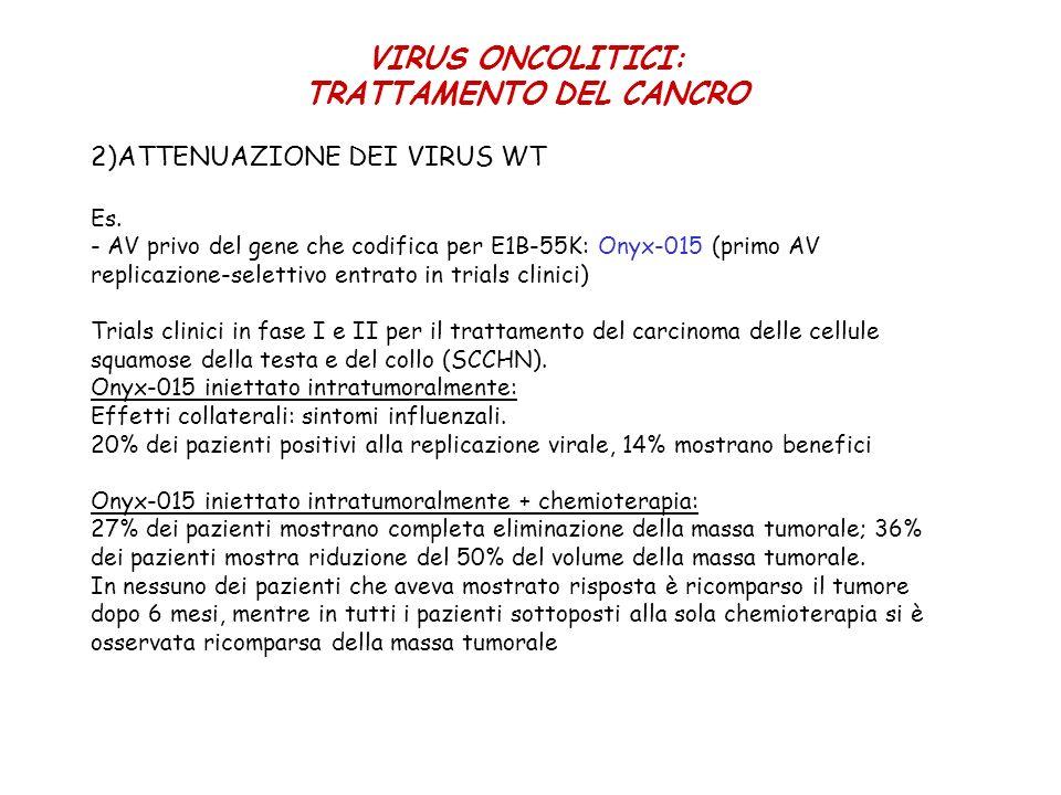 2)ATTENUAZIONE DEI VIRUS WT Es. - AV privo del gene che codifica per E1B-55K: Onyx-015 (primo AV replicazione-selettivo entrato in trials clinici) Tri