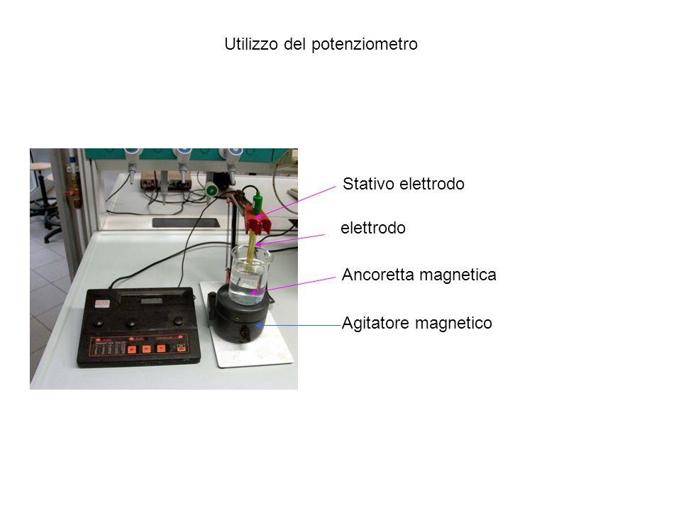Utilizzo del potenziometro elettrodo Stativo elettrodo Agitatore magnetico Ancoretta magnetica