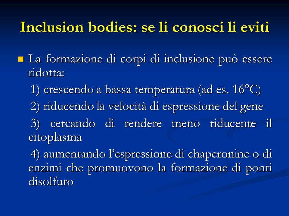 Inclusion bodies: se li conosci li eviti La formazione di corpi di inclusione può essere ridotta: La formazione di corpi di inclusione può essere rido