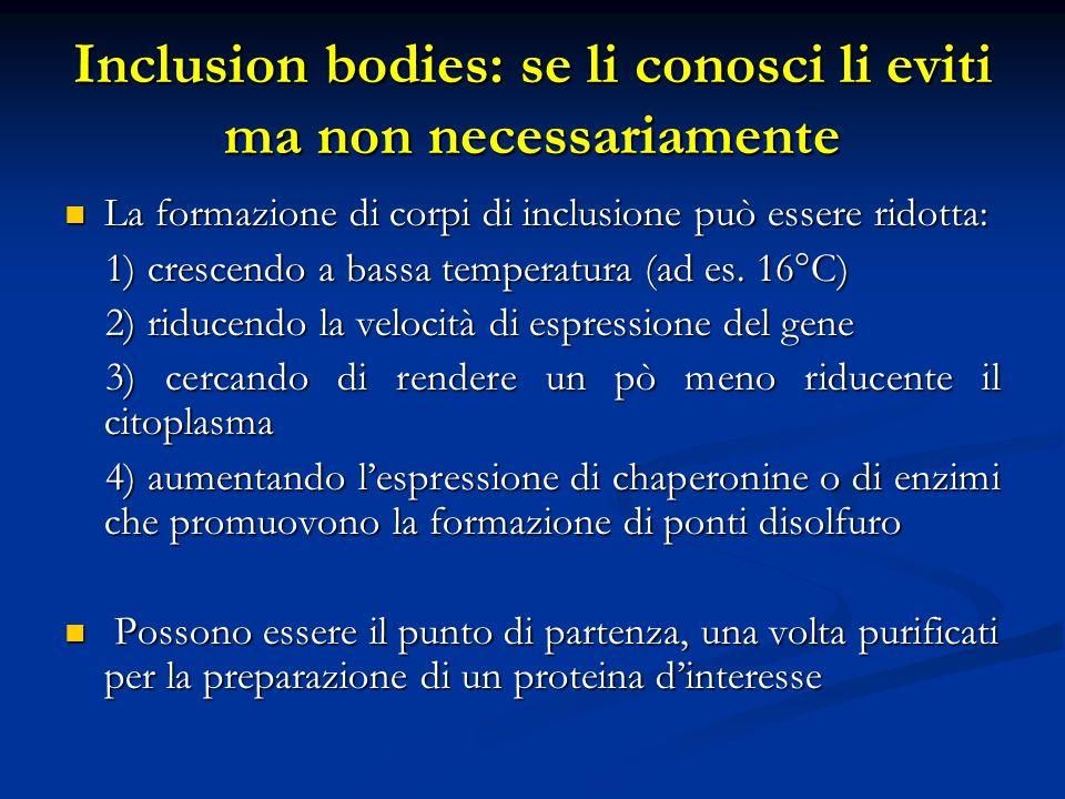 Inclusion bodies: se li conosci li eviti ma non necessariamente La formazione di corpi di inclusione può essere ridotta: La formazione di corpi di inc