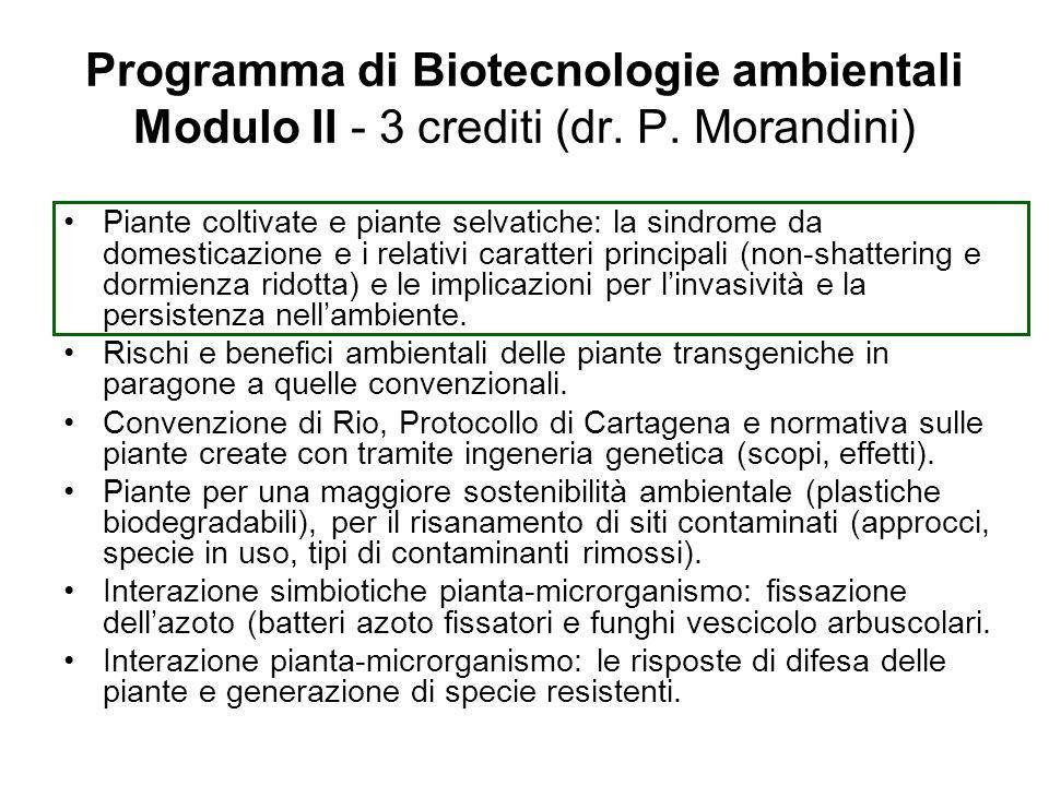 Programma di Biotecnologie ambientali Modulo II - 3 crediti (dr. P. Morandini) Piante coltivate e piante selvatiche: la sindrome da domesticazione e i