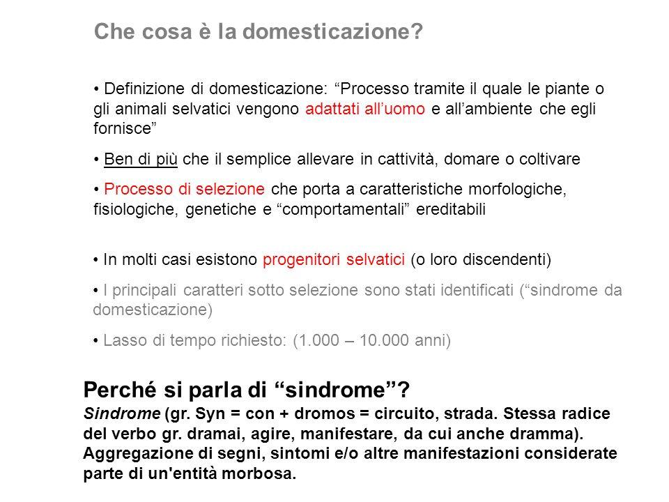 Che cosa è la domesticazione? Definizione di domesticazione: Processo tramite il quale le piante o gli animali selvatici vengono adattati alluomo e al
