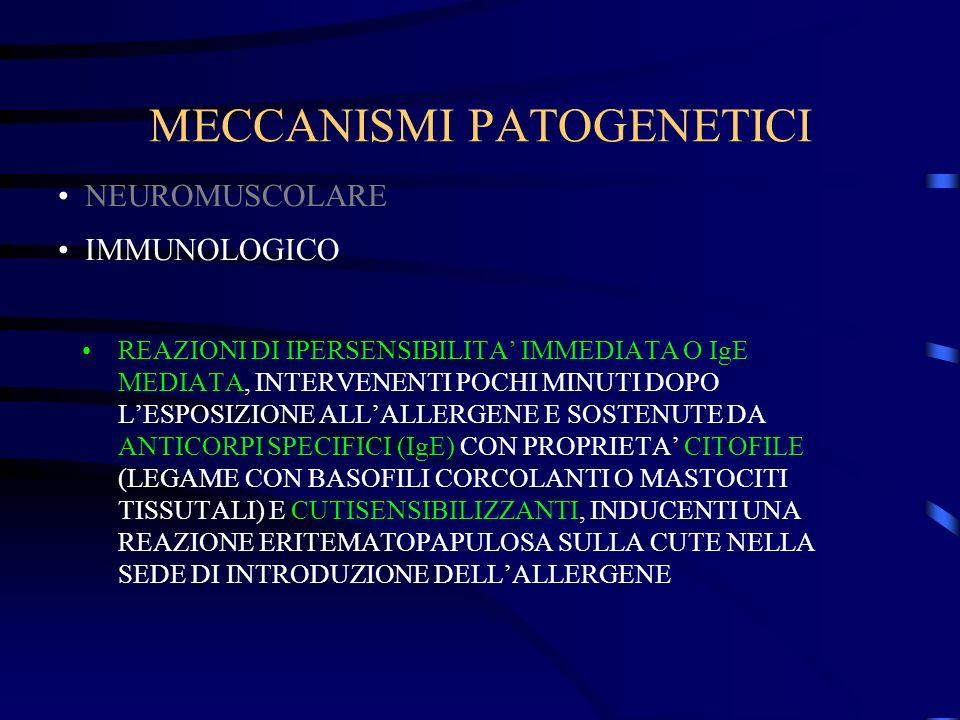 MECCANISMI PATOGENETICI REAZIONI DI IPERSENSIBILITA IMMEDIATA O IgE MEDIATA, INTERVENENTI POCHI MINUTI DOPO LESPOSIZIONE ALLALLERGENE E SOSTENUTE DA ANTICORPI SPECIFICI (IgE) CON PROPRIETA CITOFILE (LEGAME CON BASOFILI CORCOLANTI O MASTOCITI TISSUTALI) E CUTISENSIBILIZZANTI, INDUCENTI UNA REAZIONE ERITEMATOPAPULOSA SULLA CUTE NELLA SEDE DI INTRODUZIONE DELLALLERGENE NEUROMUSCOLARE IMMUNOLOGICO