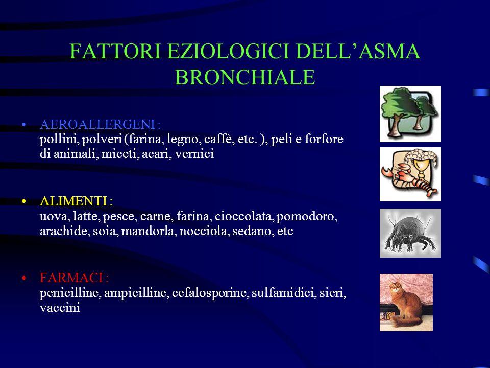 FATTORI EZIOLOGICI DELLASMA BRONCHIALE AEROALLERGENI : pollini, polveri (farina, legno, caffè, etc. ), peli e forfore di animali, miceti, acari, verni