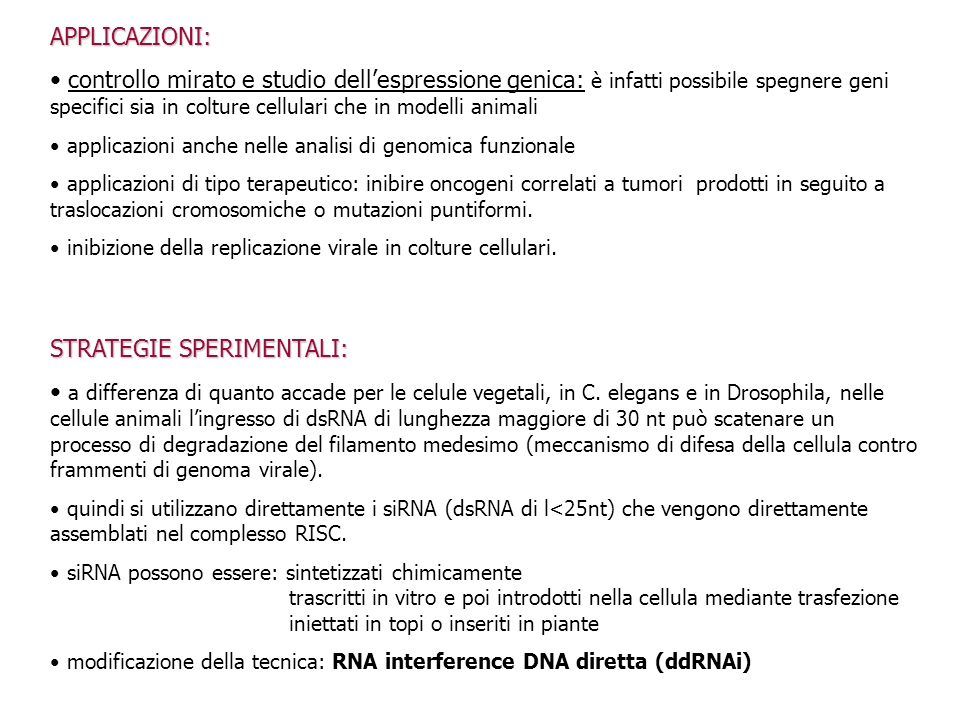 STRATEGIE SPERIMENTALI: a differenza di quanto accade per le celule vegetali, in C. elegans e in Drosophila, nelle cellule animali lingresso di dsRNA