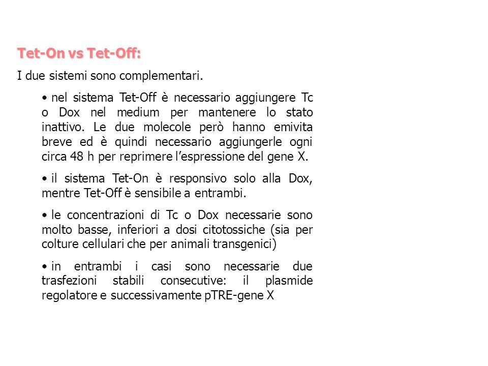 Tet-On vs Tet-Off: I due sistemi sono complementari. nel sistema Tet-Off è necessario aggiungere Tc o Dox nel medium per mantenere lo stato inattivo.