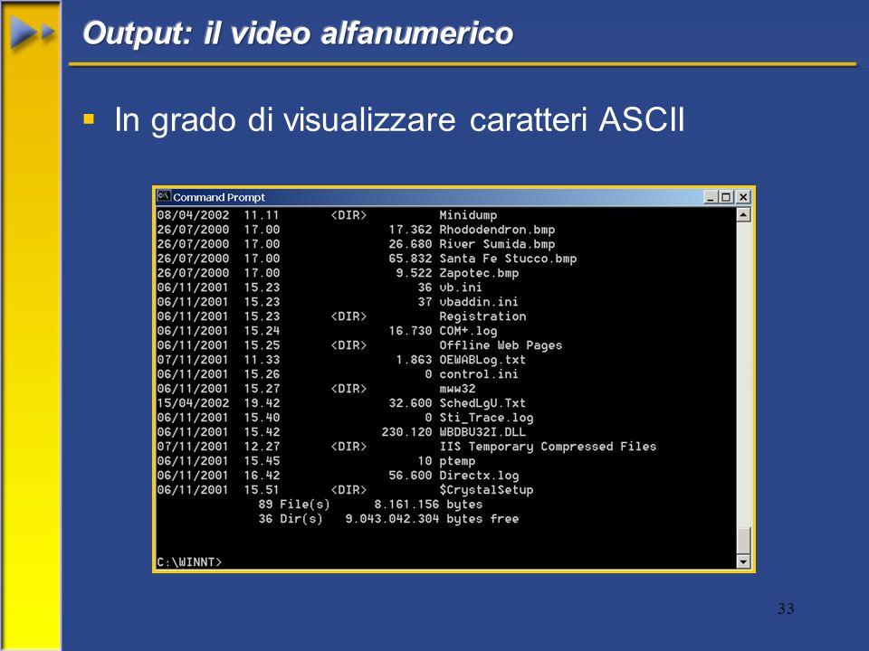 33 In grado di visualizzare caratteri ASCII
