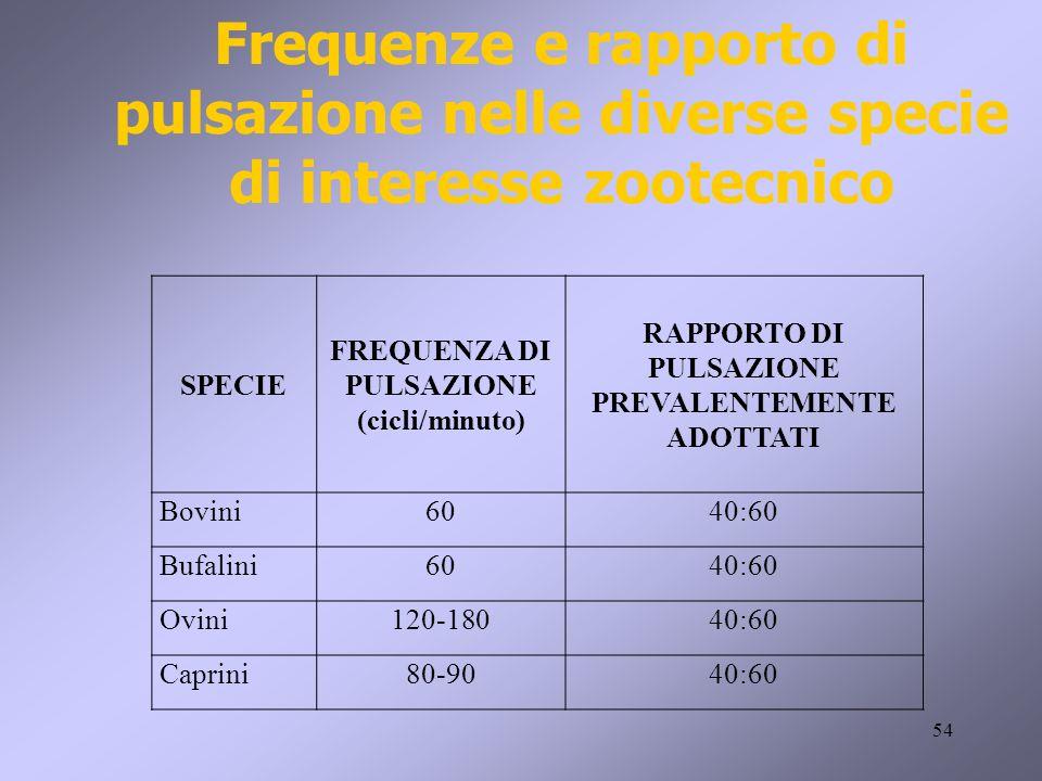 54 SPECIE FREQUENZA DI PULSAZIONE (cicli/minuto) RAPPORTO DI PULSAZIONE PREVALENTEMENTE ADOTTATI Bovini6040:60 Bufalini6040:60 Ovini120-18040:60 Capri