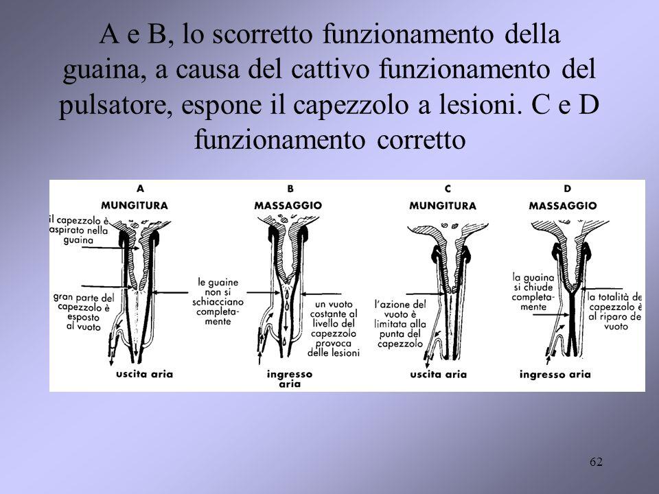 A e B, lo scorretto funzionamento della guaina, a causa del cattivo funzionamento del pulsatore, espone il capezzolo a lesioni. C e D funzionamento co