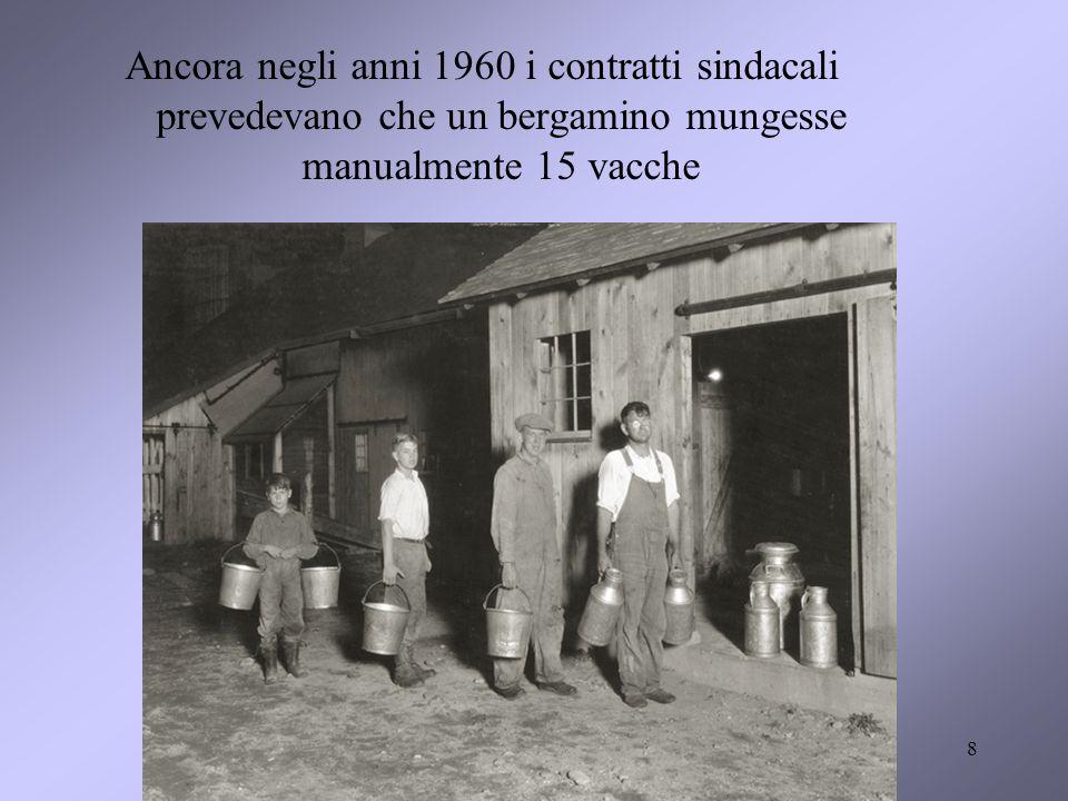 Ancora negli anni 1960 i contratti sindacali prevedevano che un bergamino mungesse manualmente 15 vacche 8