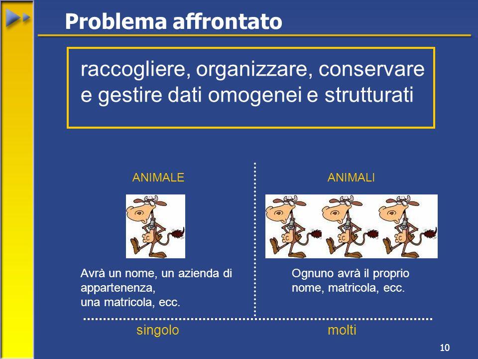 10 Problema affrontato raccogliere, organizzare, conservare e gestire dati omogenei e strutturati Avrà un nome, un azienda di appartenenza, una matric