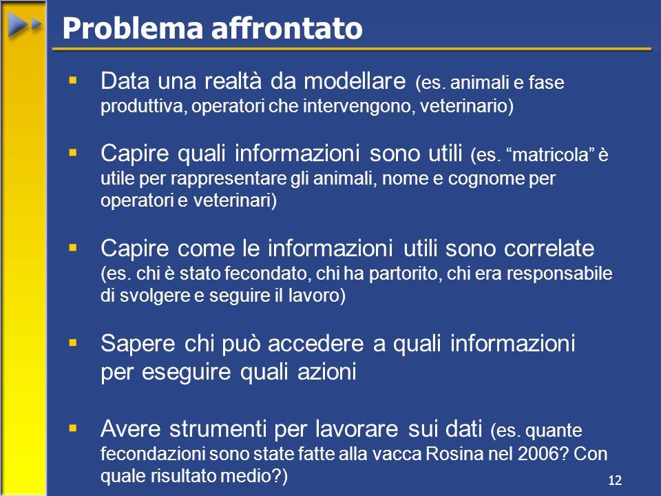 12 Data una realtà da modellare (es. animali e fase produttiva, operatori che intervengono, veterinario) Capire quali informazioni sono utili (es. mat