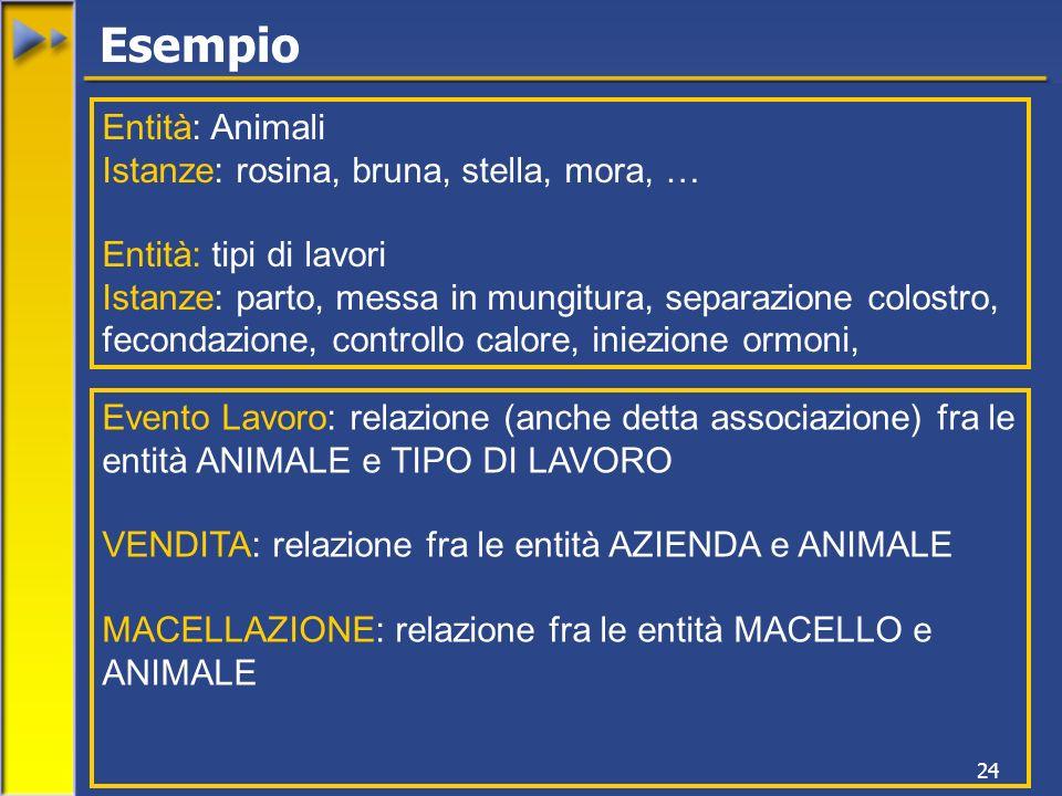 24 Evento Lavoro: relazione (anche detta associazione) fra le entità ANIMALE e TIPO DI LAVORO VENDITA: relazione fra le entità AZIENDA e ANIMALE MACEL
