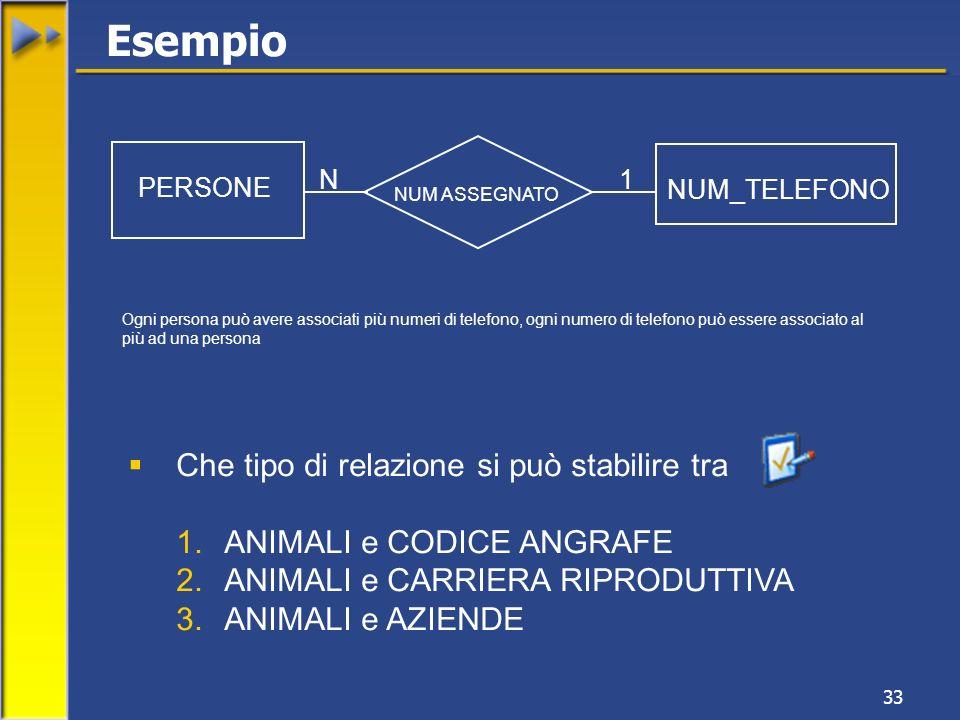 33 PERSONE NUM_TELEFONO NUM ASSEGNATO N1 Ogni persona può avere associati più numeri di telefono, ogni numero di telefono può essere associato al più ad una persona Esempio Che tipo di relazione si può stabilire tra 1.ANIMALI e CODICE ANGRAFE 2.ANIMALI e CARRIERA RIPRODUTTIVA 3.ANIMALI e AZIENDE