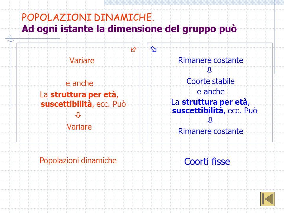 POPOLAZIONI DINAMICHE. Ad ogni istante la dimensione del gruppo può Variare e anche La struttura per età, suscettibilità, ecc. Può Variare Rimanere co