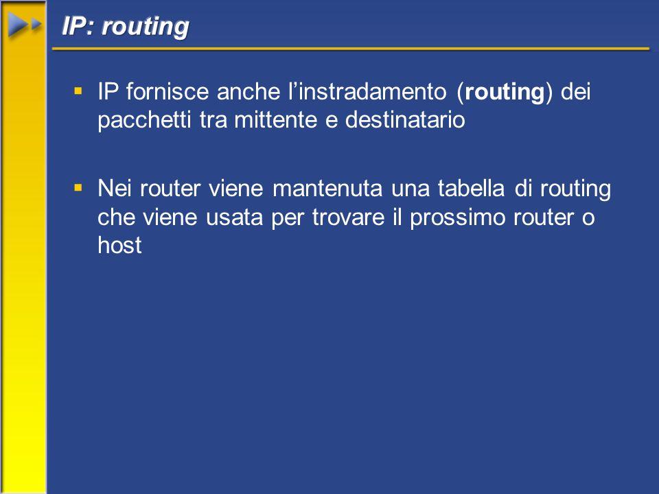 IP fornisce anche linstradamento (routing) dei pacchetti tra mittente e destinatario Nei router viene mantenuta una tabella di routing che viene usata per trovare il prossimo router o host