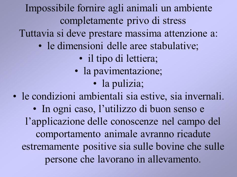 Impossibile fornire agli animali un ambiente completamente privo di stress Tuttavia si deve prestare massima attenzione a: le dimensioni delle aree st