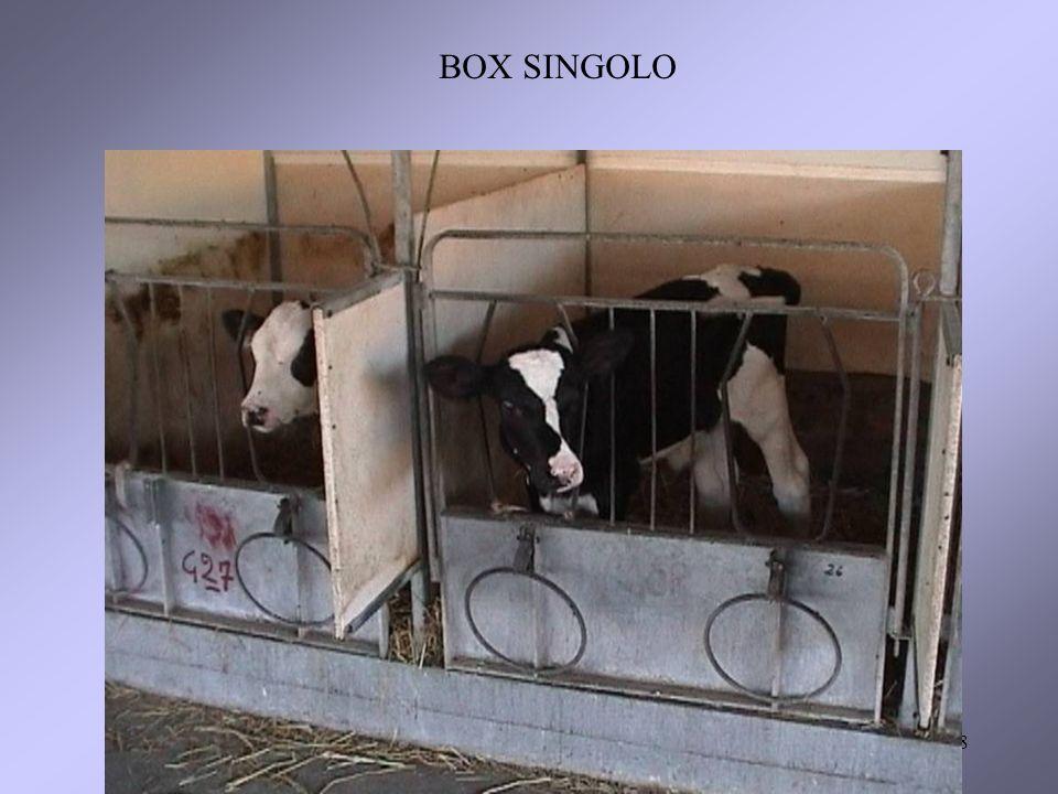 8 BOX SINGOLO
