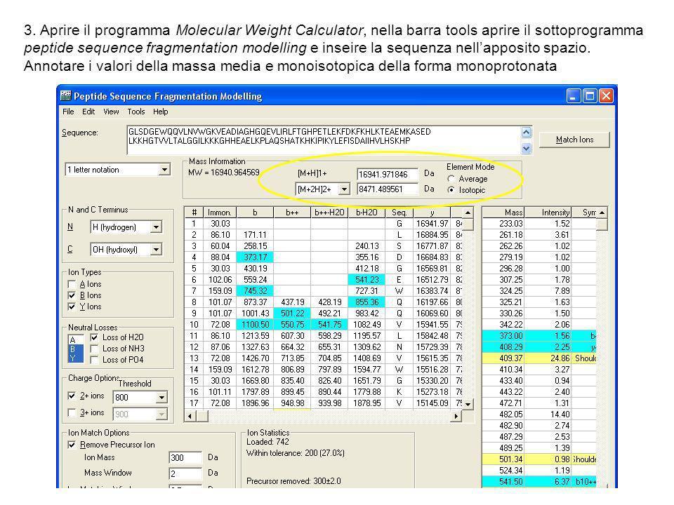 3. Aprire il programma Molecular Weight Calculator, nella barra tools aprire il sottoprogramma peptide sequence fragmentation modelling e inseire la s