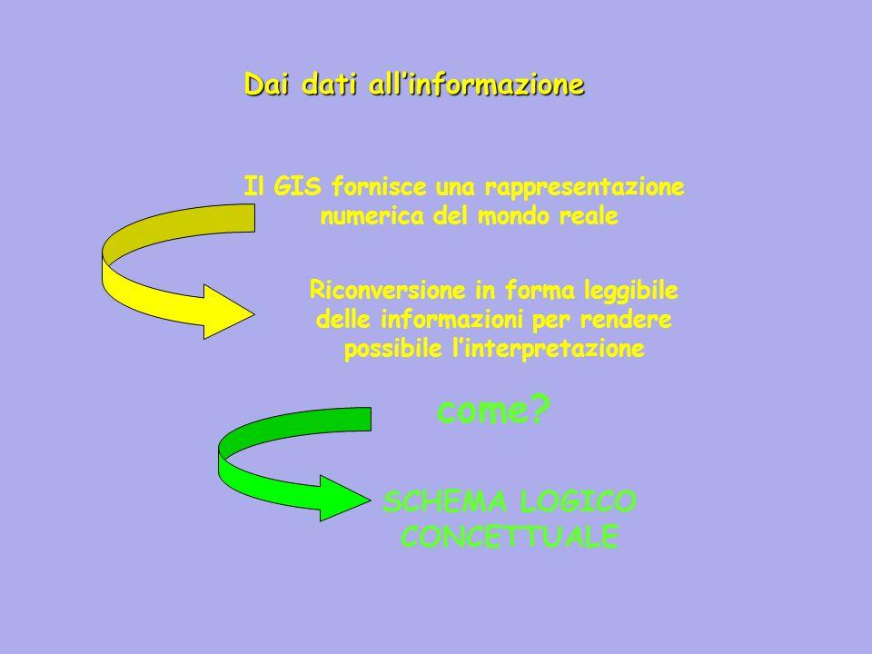 Il GIS fornisce una rappresentazione numerica del mondo reale Riconversione in forma leggibile delle informazioni per rendere possibile linterpretazio