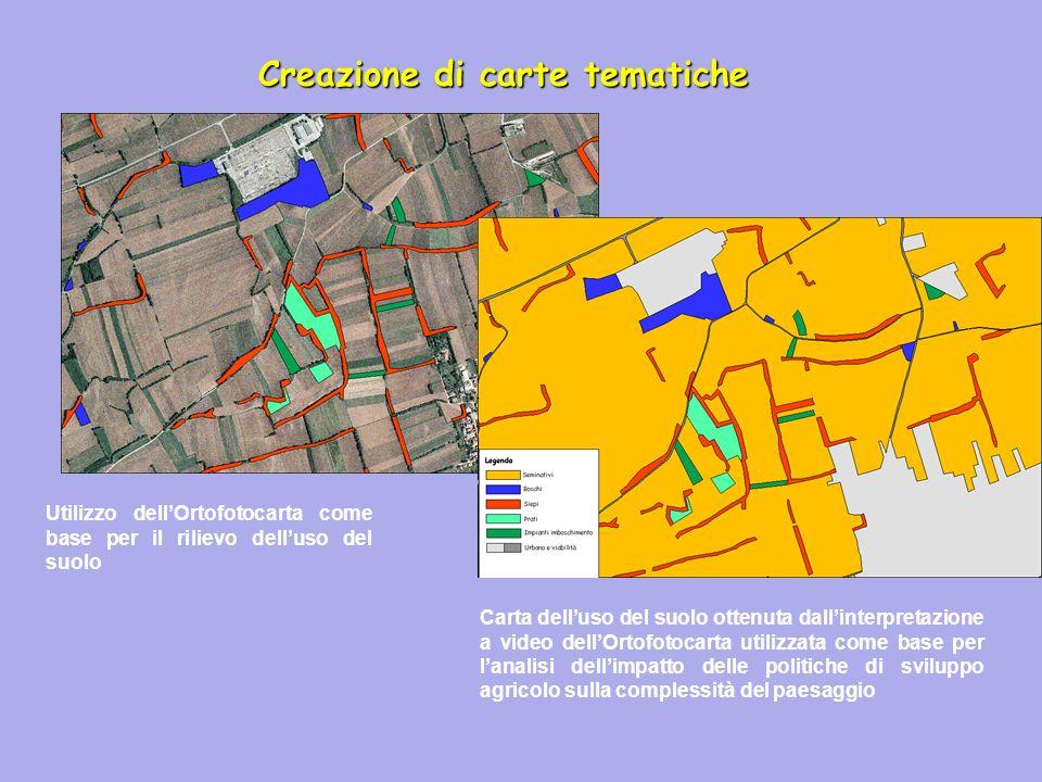 Creazione di carte tematiche Utilizzo dellOrtofotocarta come base per il rilievo delluso del suolo Carta delluso del suolo ottenuta dallinterpretazion