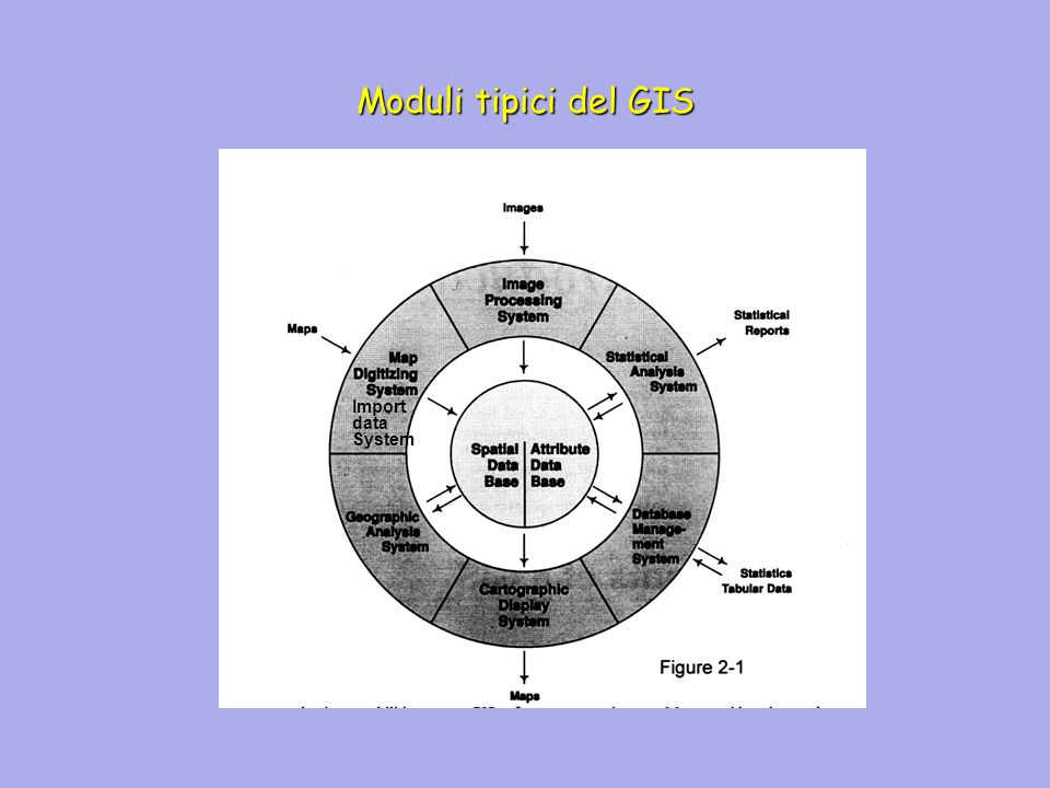 Il GIS fornisce una rappresentazione numerica del mondo reale Riconversione in forma leggibile delle informazioni per rendere possibile linterpretazione come.