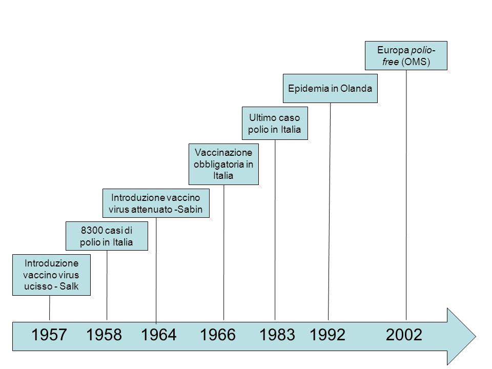 1957 1958 1964 1966 1983 1992 2002 Introduzione vaccino virus ucisso - Salk 8300 casi di polio in Italia Introduzione vaccino virus attenuato -Sabin V