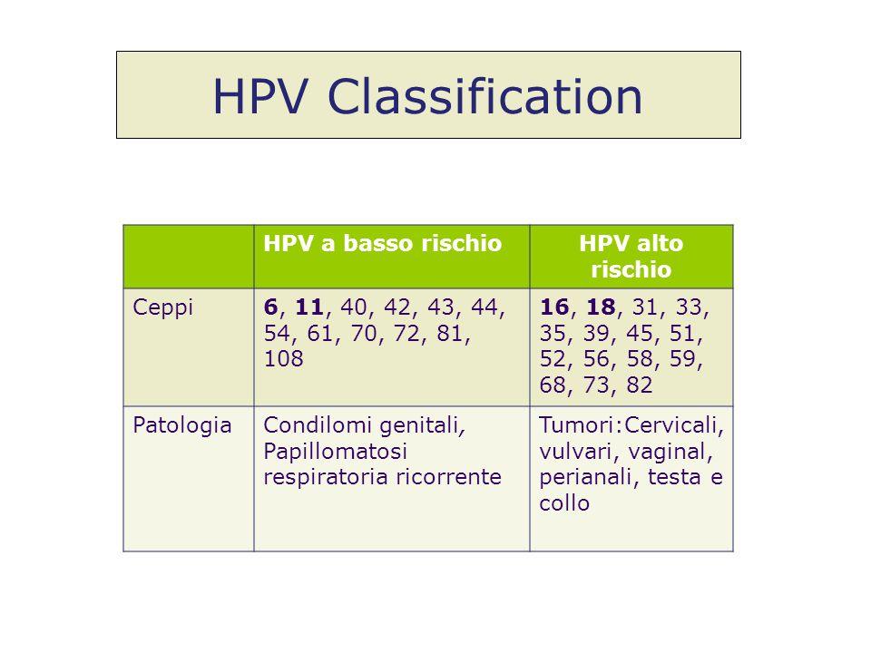 HPV a basso rischioHPV alto rischio Ceppi6, 11, 40, 42, 43, 44, 54, 61, 70, 72, 81, 108 16, 18, 31, 33, 35, 39, 45, 51, 52, 56, 58, 59, 68, 73, 82 Pat