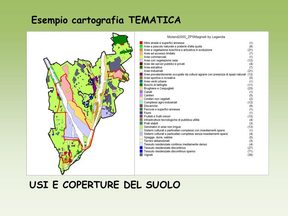 Esempio cartografia TEMATICA USI E COPERTURE DEL SUOLO