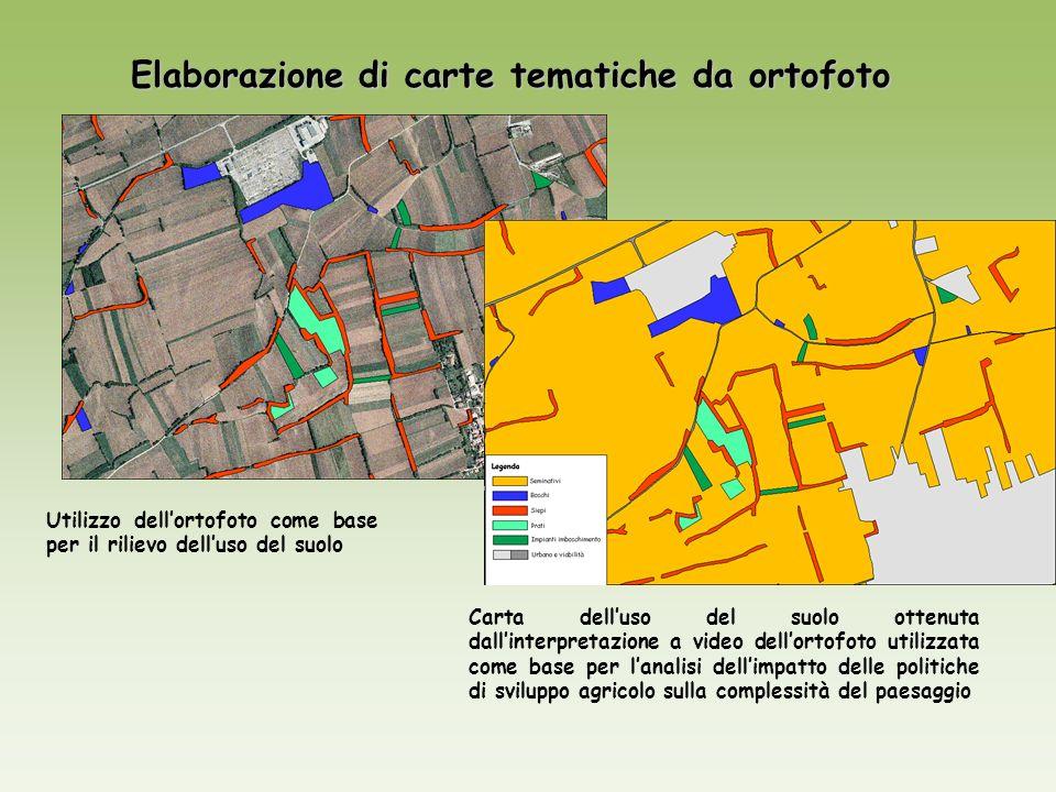 Elaborazione di carte tematiche da ortofoto Utilizzo dellortofoto come base per il rilievo delluso del suolo Carta delluso del suolo ottenuta dallinte