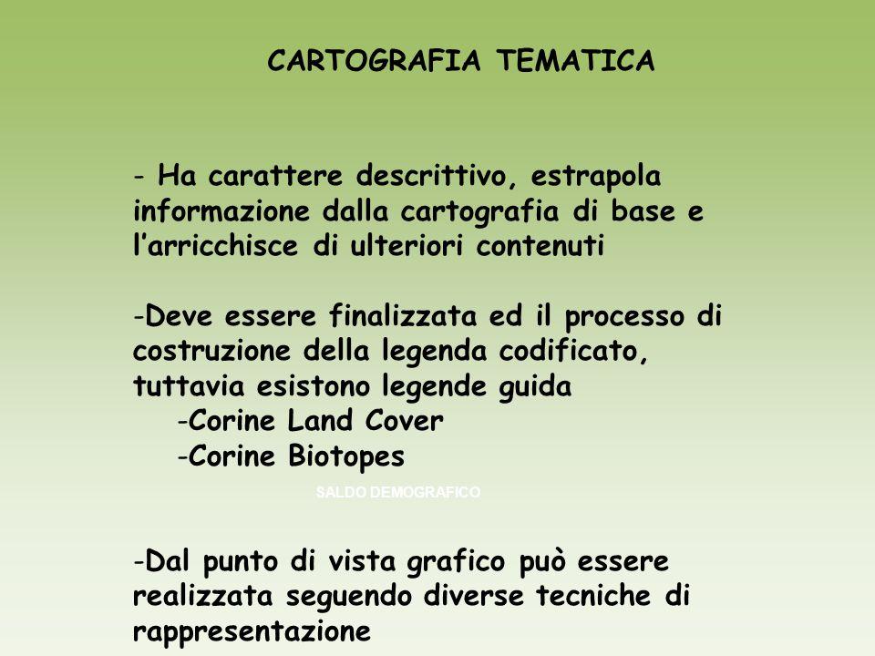 CARTOGRAFIA TEMATICA SALDO DEMOGRAFICO - Ha carattere descrittivo, estrapola informazione dalla cartografia di base e larricchisce di ulteriori conten