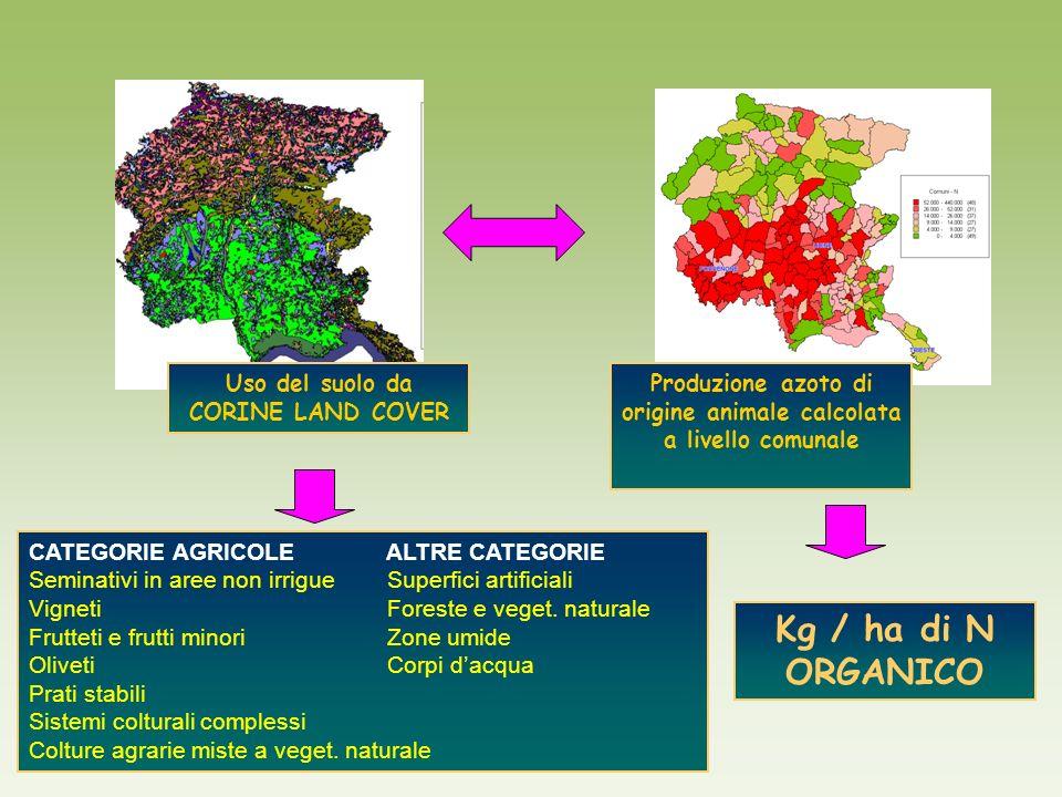 CATEGORIE AGRICOLE ALTRE CATEGORIE Seminativi in aree non irrigue Superfici artificiali Vigneti Foreste e veget. naturale Frutteti e frutti minori Zon