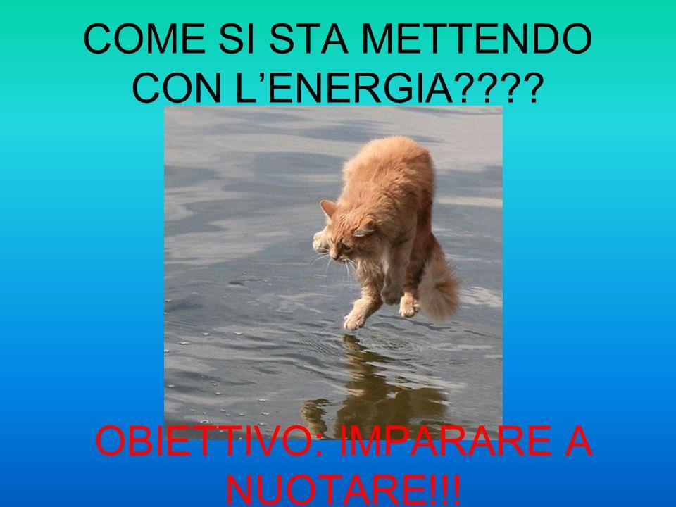 COME SI STA METTENDO CON LENERGIA???? OBIETTIVO: IMPARARE A NUOTARE!!!