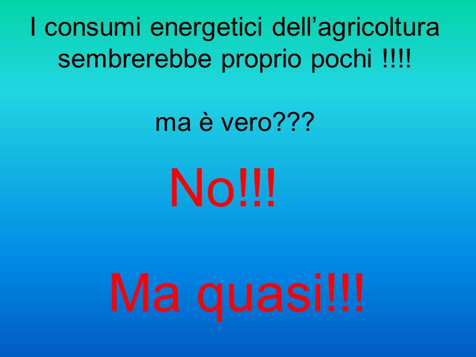 I consumi energetici dellagricoltura sembrerebbe proprio pochi !!!! ma è vero??? No!!! Ma quasi!!!