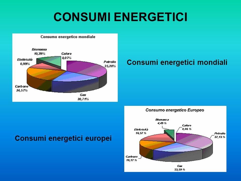 CONSUMI ENERGETICI Consumi energetici mondiali Consumi energetici europei